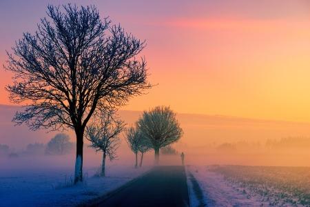 winter-3197686_960_720