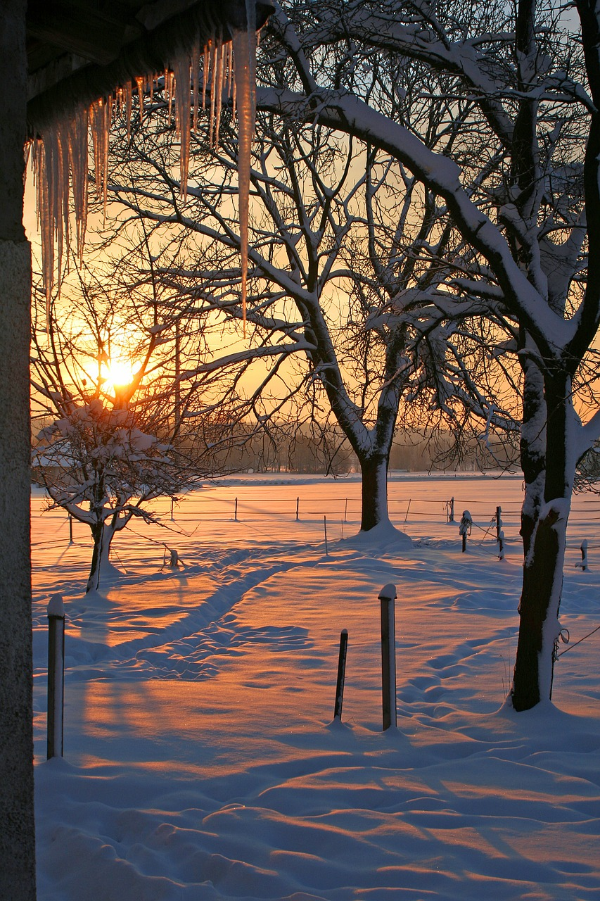 sunrise-373103_1280