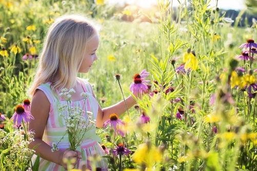 little-girl-2516578_1280 (1)